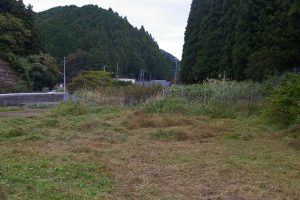 草刈りアフター